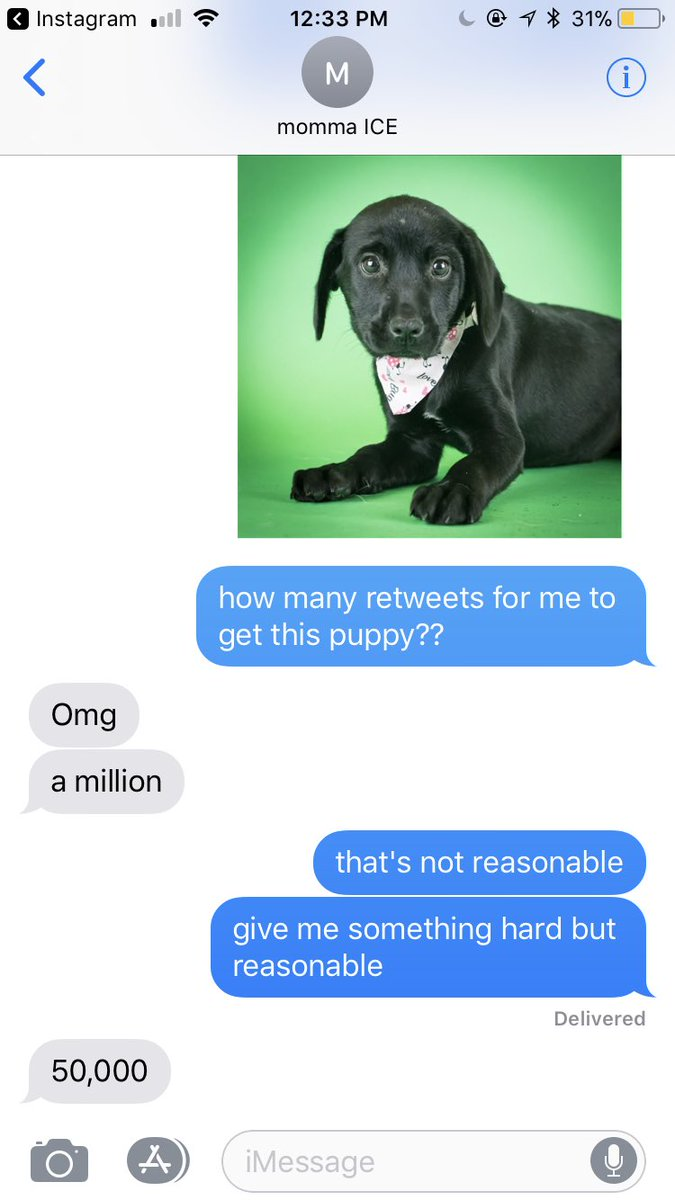 this is a long shot but me and my sister want a new pup so help a girl out😂