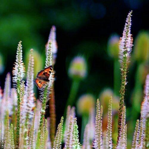 Красоты природы урала фото