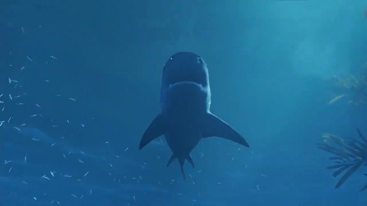 🦈🦈🦈🦈🦈🦈 MAN EATER is an open world action RPG where you play AS THE SHARK! #GameReady #E32018