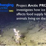 Scientists in #ArcticPRIZE project travel to the Arctic Ocean...
