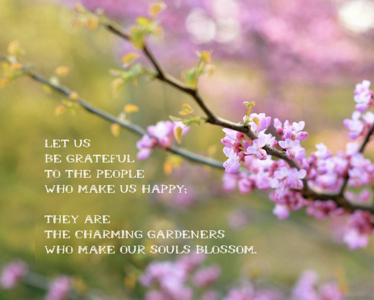 """Just2Choices på Twitter: """"Choose gratefulness today! """"Let us be grateful to  the people who make us happy: They are the charming gardeners who make our  souls blossom."""" ~Marcel Proust #ChooseThankfulness #ItsAllaChoice  #ChoiceLife…"""