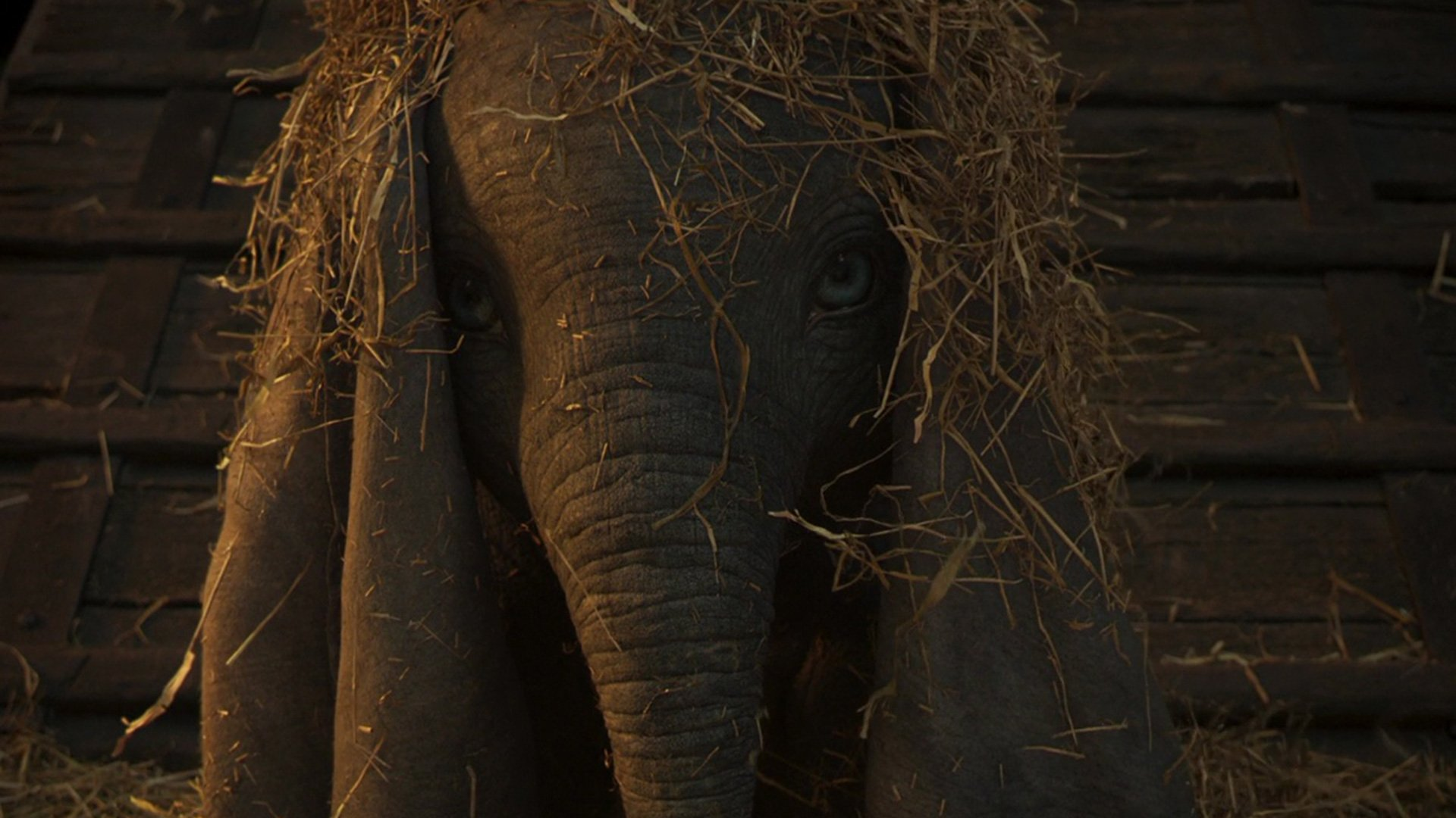 Take a look at the first trailer for Tim Burton's Dumbo.  https://t.co/O4e0iuGH94 https://t.co/JRF2qwhuEi