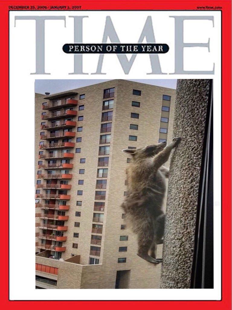 Steph S.'s photo on #mpraccoon