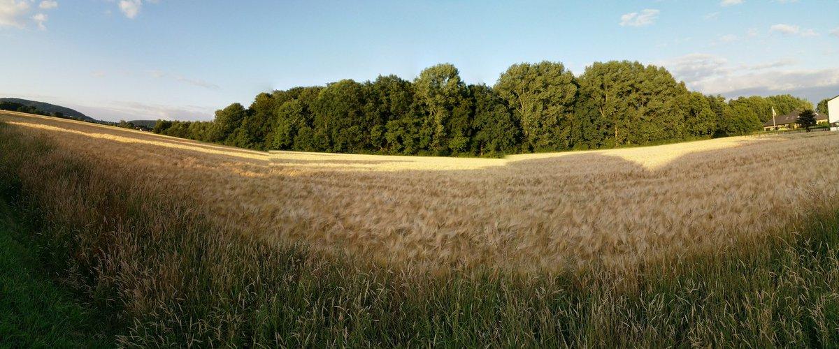 zwangsversteigerungen bad oeynhausen