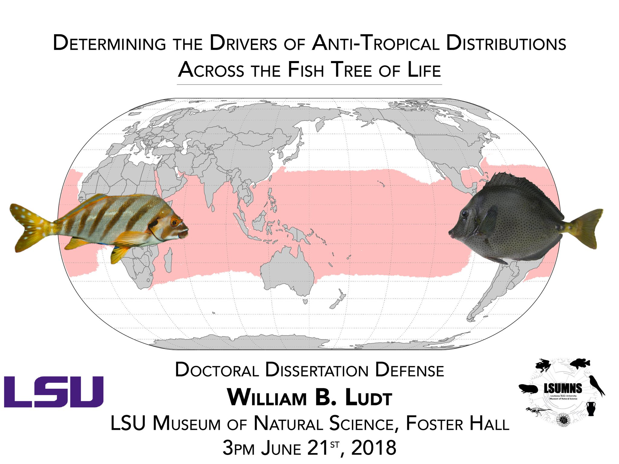 lsu dissertation defenses