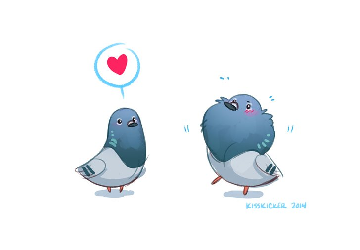 i have been INFORMED that it is PIGEON APPRECIATION DAY