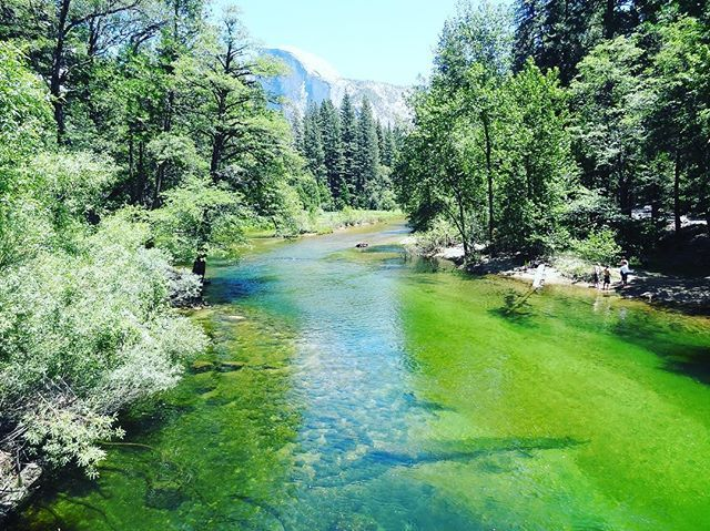 test Twitter Media - #ThroughBack #Yosemite #California #travel #travelog #travelgram #travelguide #travelblogger #vacation #travelphotography #lake #GreenLake #YosemiteValley https://t.co/YGLHDi9kaj https://t.co/qNxHtZuyjn