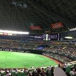 Image for the Tweet beginning: たまには野球観るのもいいな〜 将来はヤクルト好きのあの子と一緒に通いまくるやつやろ。