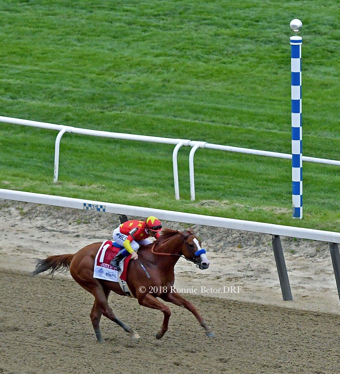 Winning margin! - Horse Racing Today