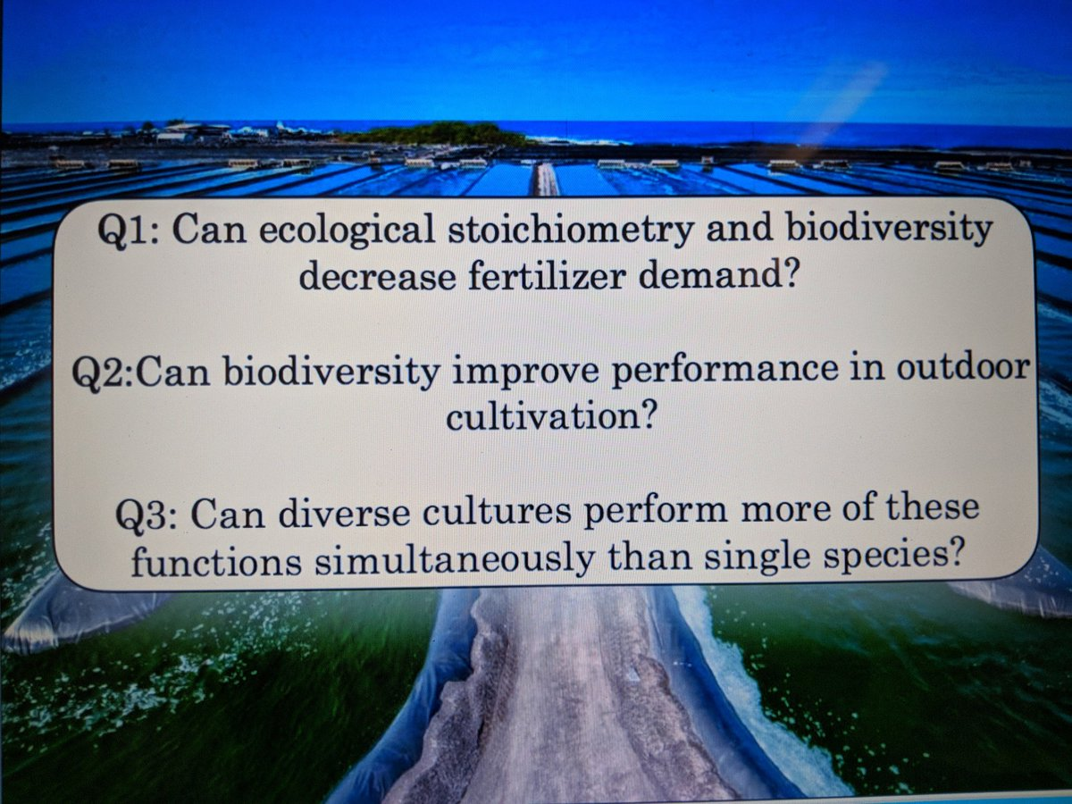 a decrease in biodiversity should we There are many justifications and reasons as to why we should conserve biodiversity conserving a tiger or a turtle may not be directly beneficial to us but the reasons for saving endangered species and biodiversity can be categorized broadly into four reasons-utilitarian, ecological, aesthetic and ethical.