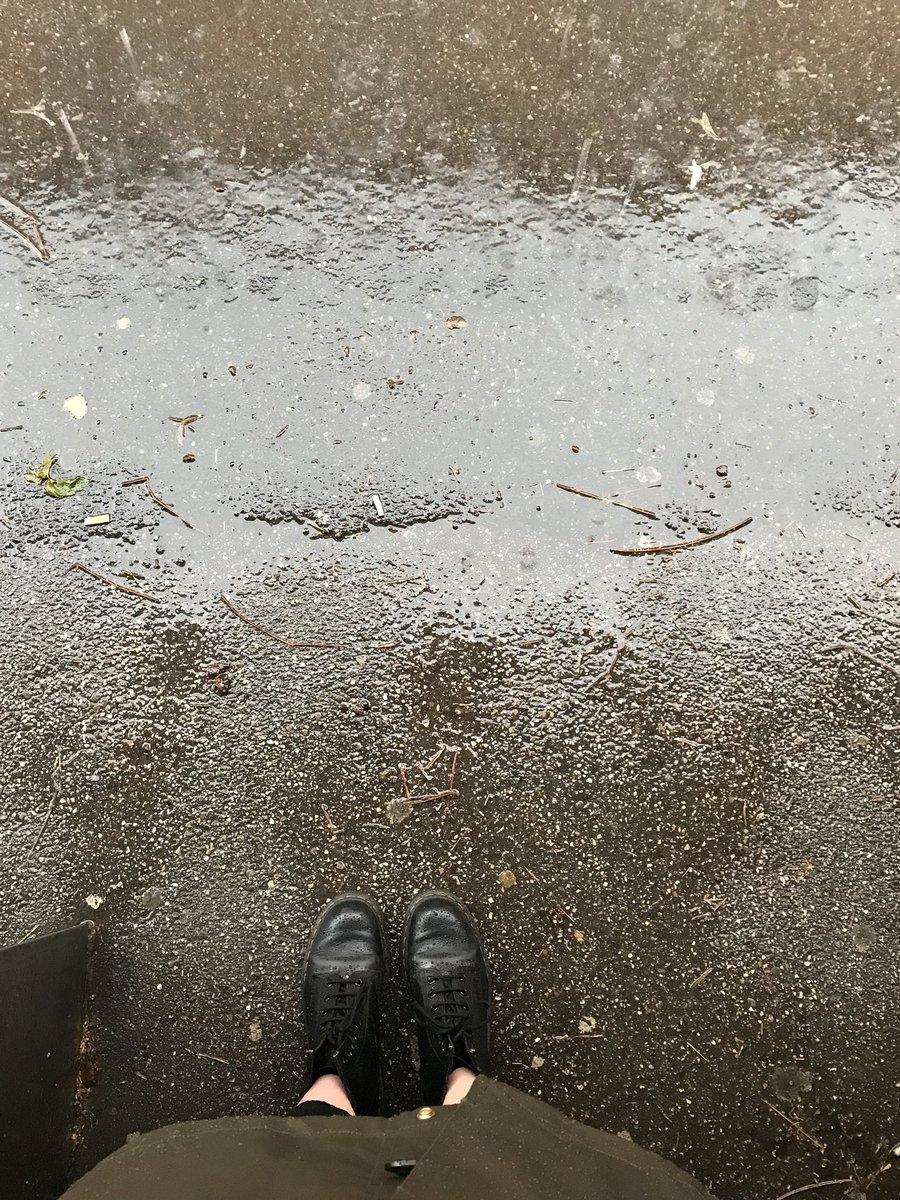 #Accadeoggi by breveglierig: Anfibi e pioggia...#14giugnodiconodioggi accadeoggi  - Ukustom