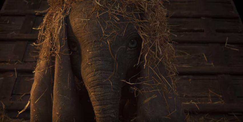 ODEON's photo on #Dumbo