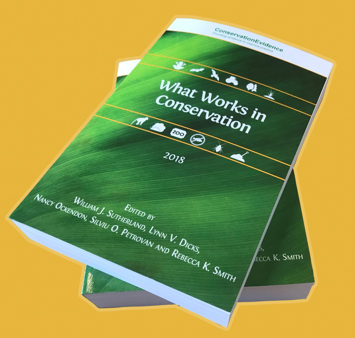 test Twitter Media - What works in #conservation? @ConservEvidence's 2018 edition is an essential, practical tool for conservationists on the ground. The book includes more than 1,200 of the latest scientific studies, and is #openaccess! https://t.co/4s908mevEQ @Bill_Sutherland https://t.co/XgyA6UbP6E