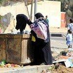 gaza Twitter Photo