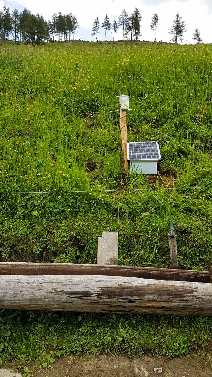 Have you heard of our Solar Panel Solution? With the help of a solar-powered read-out device, data can also be collected and read out at pasture ☀️🐄 #smaXtec