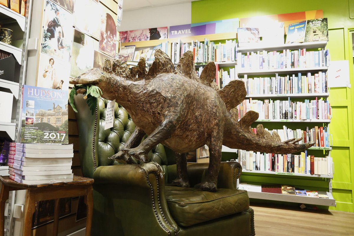 oxfam lincoln books on twitter our stegosaurus taking a break