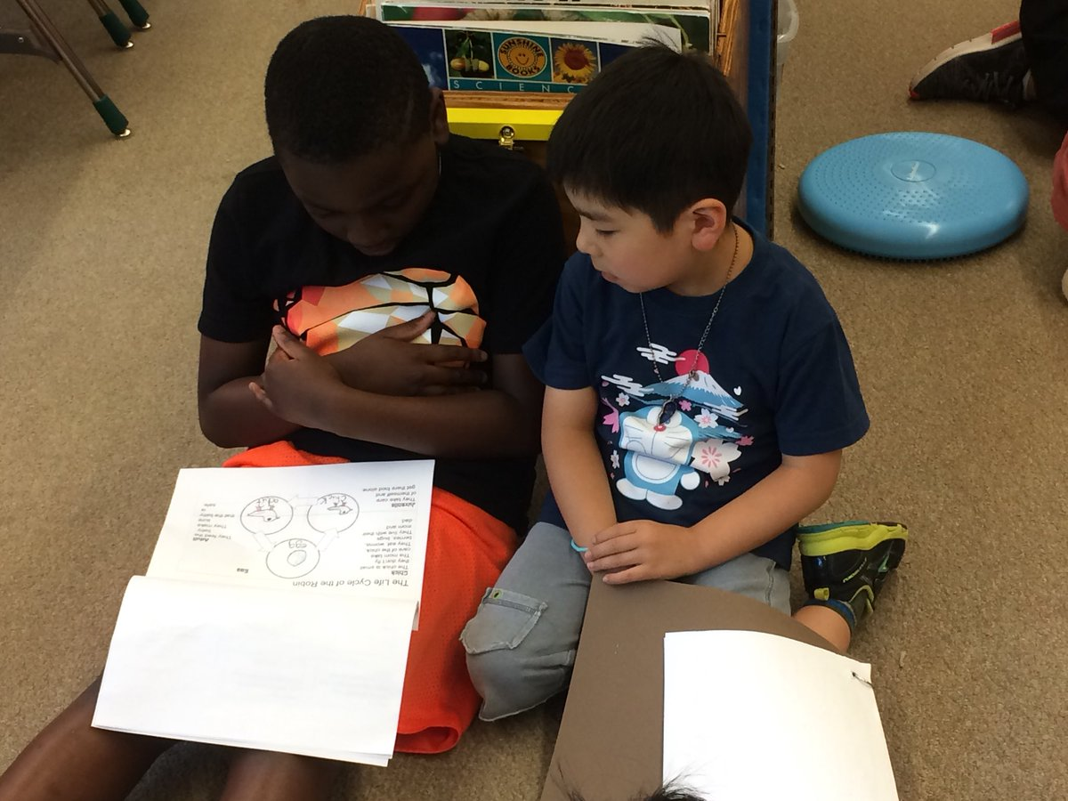 First and fourth grade buddies sharing their nonfiction texts together!