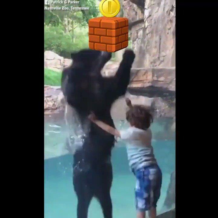 'It's-a me. Bear-io.' https://t.co/fwWNaQH78h