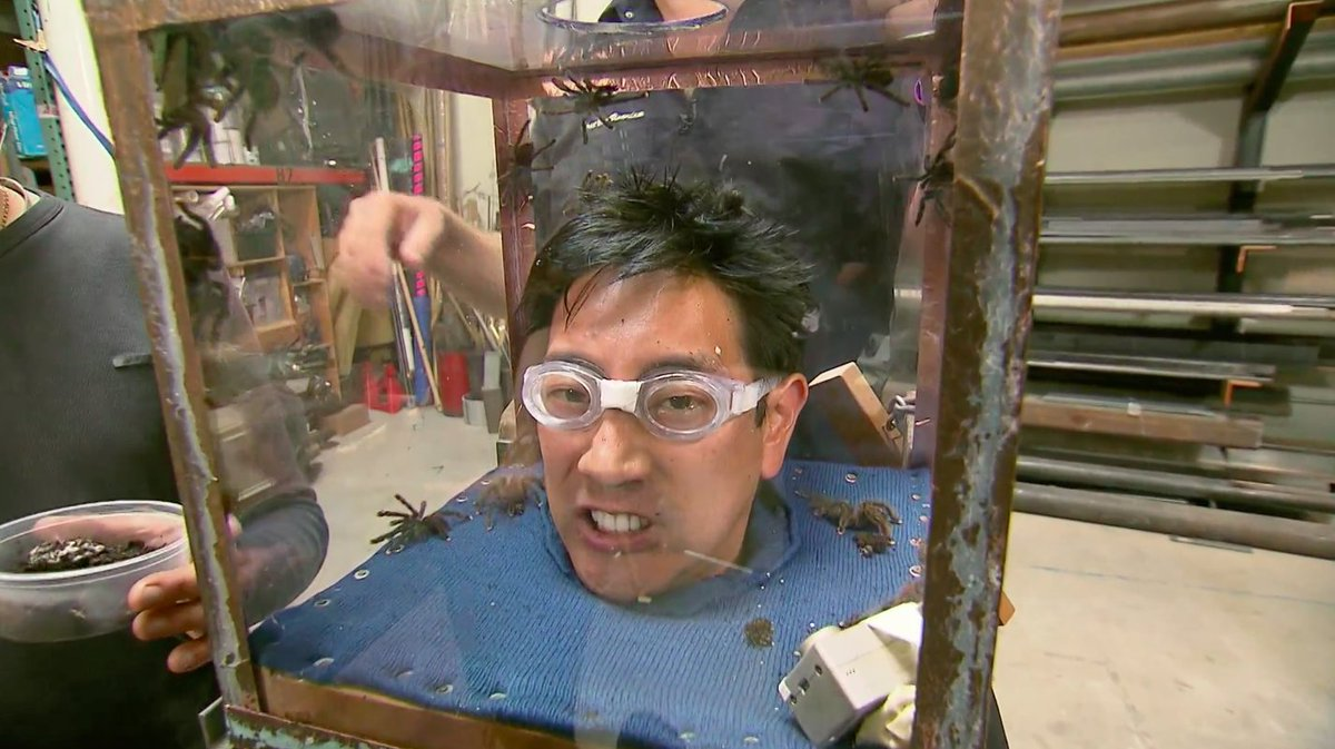 . @grantimahara is facing a fear of having spiders dumped on his head so we can see if he gets cold feet. They had soft little legs that tickled when they walked on your hand.  Kind of cute.  Don't think Grant thought so as they pooped in his hair. Bwahahaha. -- @KariByron