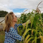 Susie McLachlan, Founder of Mindful Nutrients, has seen first hand how the impact of profound changes to people's diets has a positive effect on ADHD, anxiety and autism spectrum disorders. To read more follow the link: https://t.co/QS0iIg2brd  #foodinnovation #mindfulnutrients