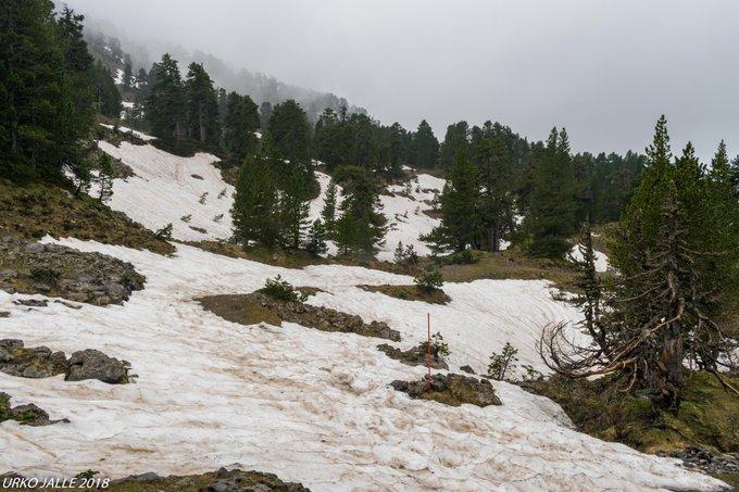 El llano de La Contienda a tan solo 1720m en pleno corazón del macizo Larra-Belagua permaneció nevado hasta hace exactamente una semana, pero las laderas orientación norte siguen nevadas desde 1685m. @CyNPirineos @pirineonavarro