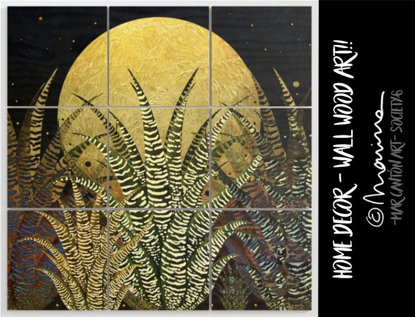 Mar Cantón Kiki On Twitter Golden Aloe Zebra Midnight