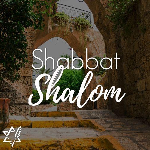 Shabbatshalom twitter search 2 replies 60 retweets 140 likes thecheapjerseys Choice Image