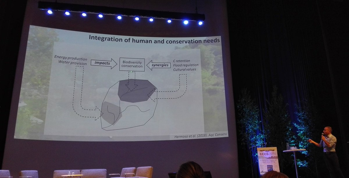 Future #conservation of #freshwater #biodiversity will benefit from integrated #conservationplanning of land uses and conservation areas. Great plenary of @leo_bne at the #ECCB2018 <br>http://pic.twitter.com/iLkMsMsk7v