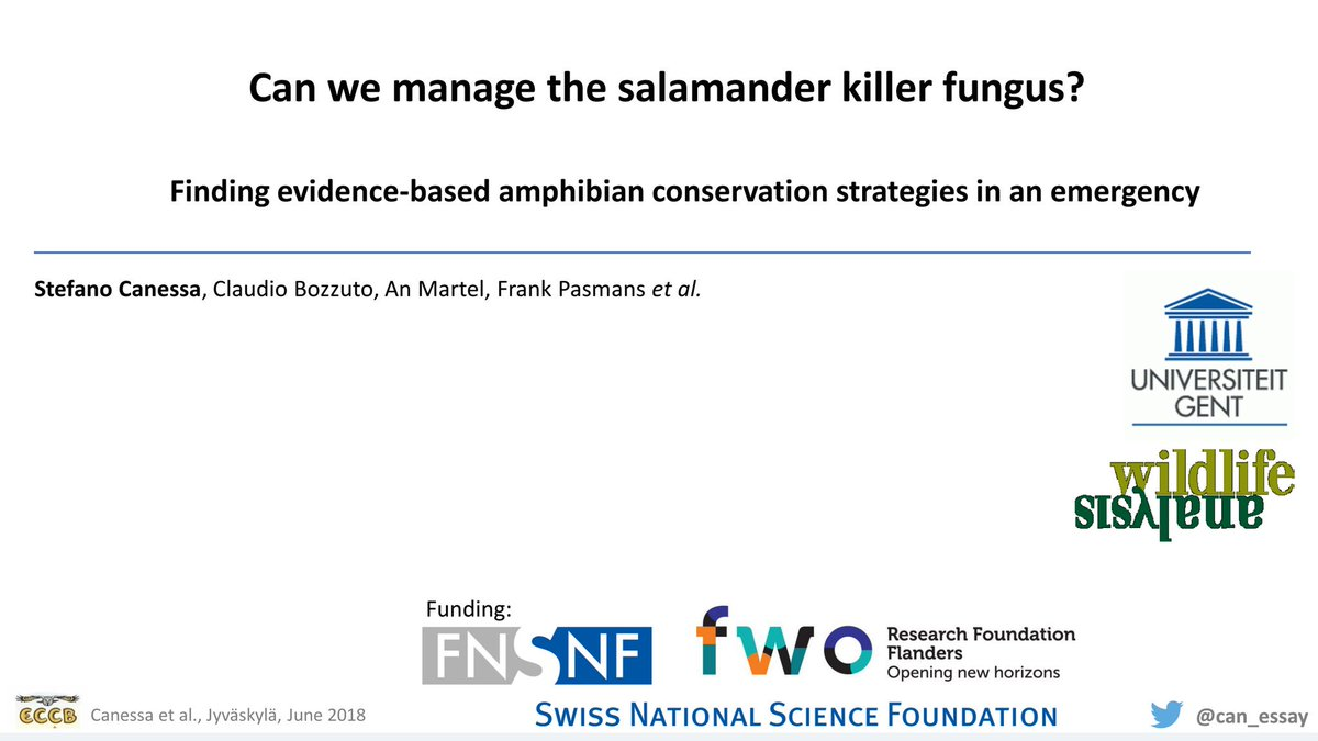 Today at #ECCB2018 I will explain why #salamander killer #chytrid fungus is a massive threat to #Europe&#39;s #amphibian #biodiversity - one we&#39;re not ready for. 14.30 A3 Wolmer<br>http://pic.twitter.com/CSxYcuJQFb