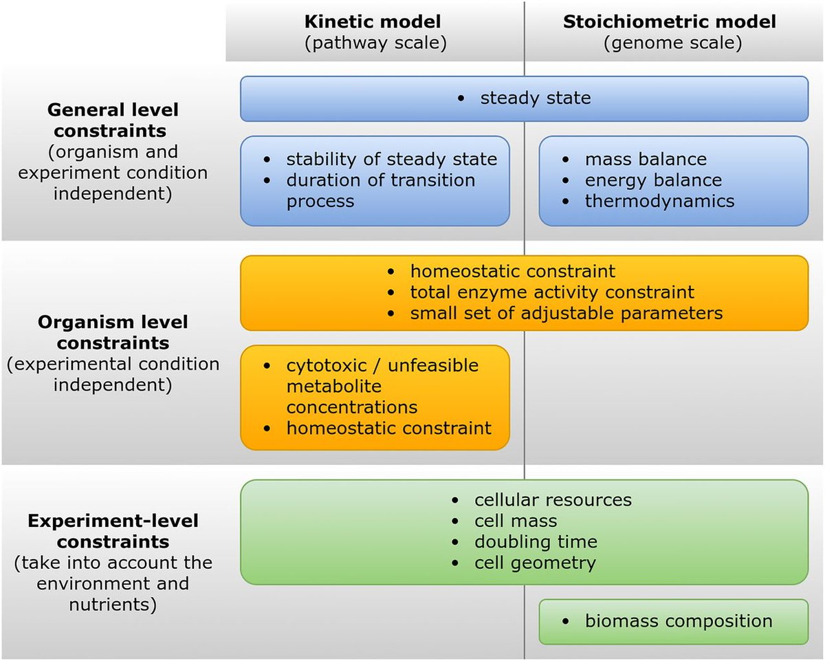 protein improvement hermodynamic and kinetic stabilities essay The final goal is to develop novel, pharmacologically active protein molecules with enhanced thermodynamic, kinetic and downstream production properties here we describe how we designed artificial cytokines in silico, and experimentally characterised their biophysical and pharmacological properties.