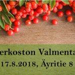 Image for the Tweet beginning: MLP-valmentajaverkoston syksyn kohokohta eli #Valmentajapäivä