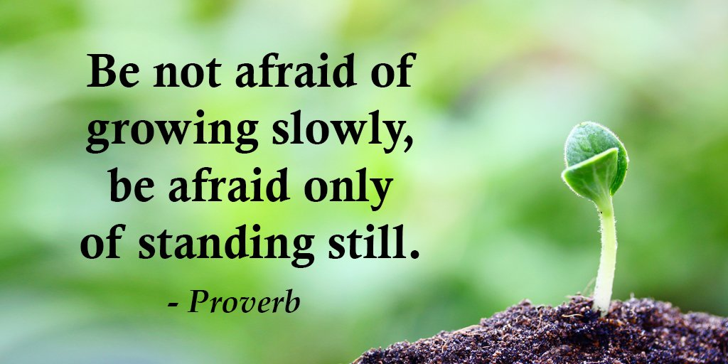 "Gary Hensel on Twitter: ""Be not afraid of growing slowly, be afraid only of standing still. - Petteri Tarkkonen #quote… """