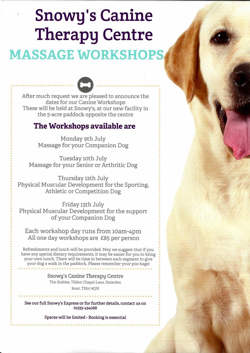 Kent Canine Therapy