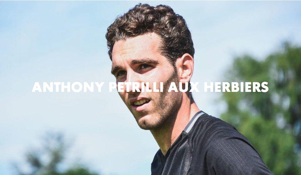 Anthony Petrilli