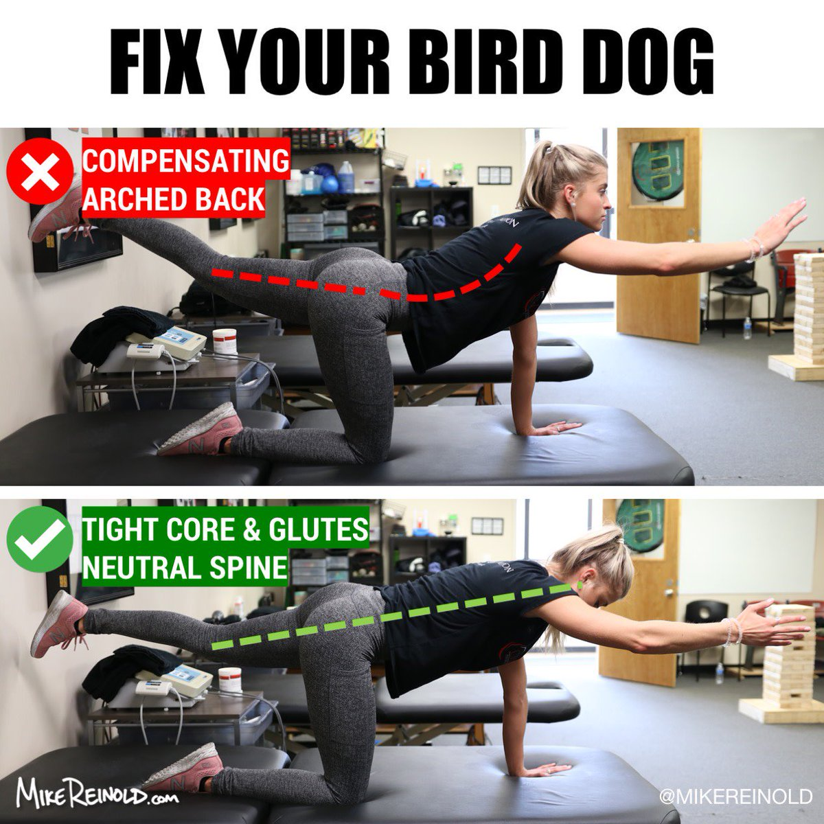 Mike Reinold On Twitter Fix Your Bird Dog Exercise
