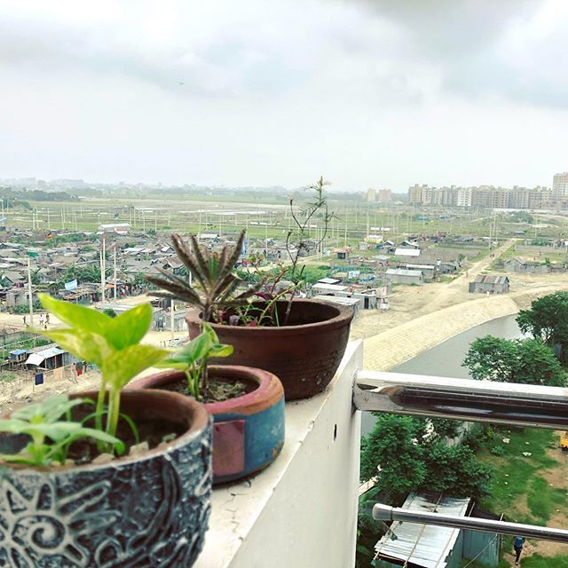 test Twitter Media - Urbanization!  #Mirpur #DOHS #Dhaka #Bangladesh #Urban #iphonex #iphotography #iphonephotography #iphoneography #instagram #plant #Evening #sky #balcony #balconygarden #garden #gardening #green #mylittlegreen #friday #fridaymood #home #cityscape #citylif… https://t.co/HgHQKbM8c2 https://t.co/ib5qGyNcYP