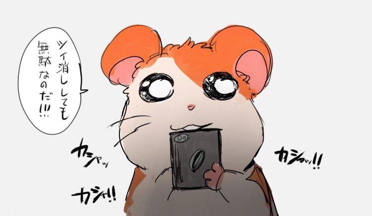 いまむーさんの投稿画像