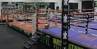 test Twitter Media - Get to know more about the team who trains your favorite fighters at Mayweather Boxing Club here:https://t.co/hWHNNS8Fvq https://t.co/GzgEBZY0xX
