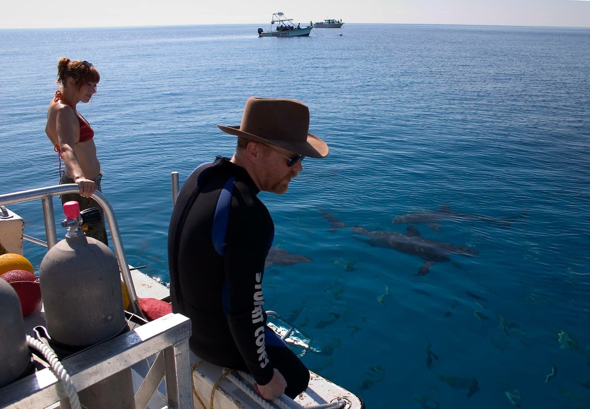 Sure are a lot of sharks in that water ... from our first #SharkWeek special. -- @KariByron