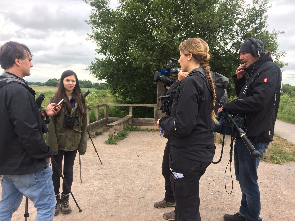 Birdgirl On Twitter Filming On The The Somerset Levels