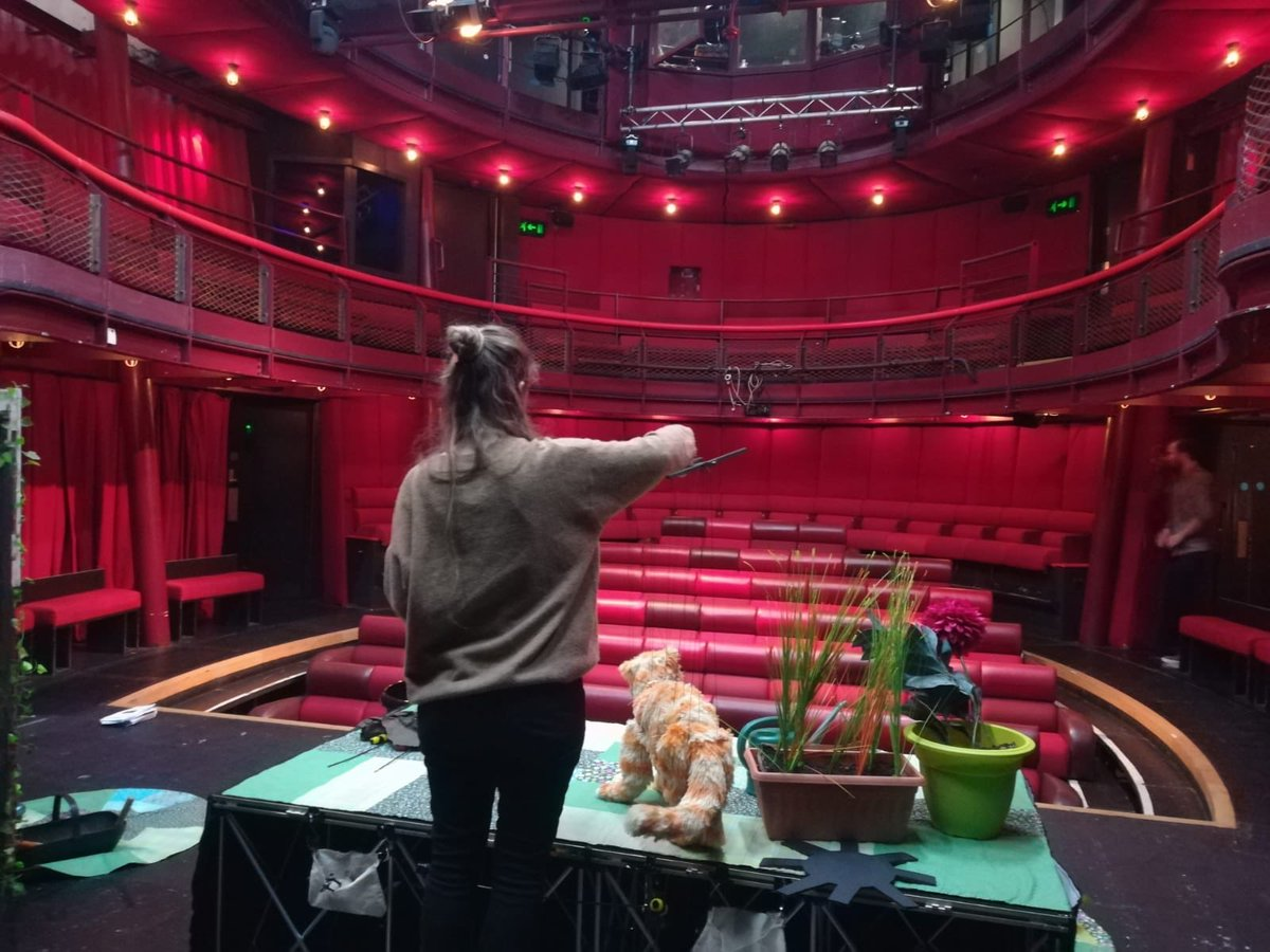 All ready to go ⁦@theeggbath⁩ today! 🐈🐈🐈