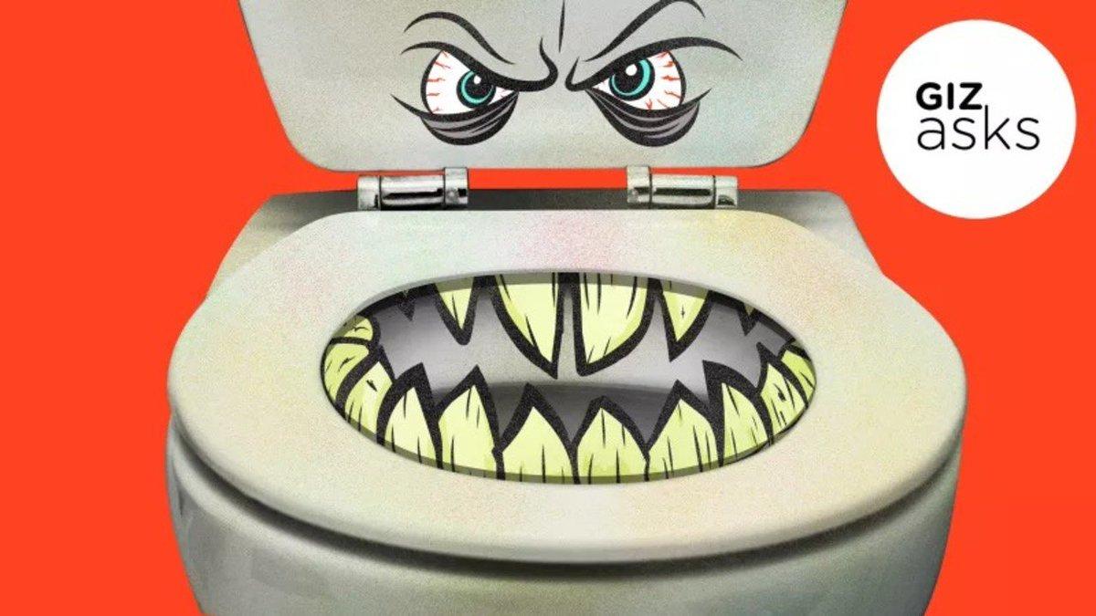 トイレの便座から病気がうつることってあるの? #トイレ #サイエンス #人体 #フィットネスヘルスケア https://t.co/xkVfwH8GXF