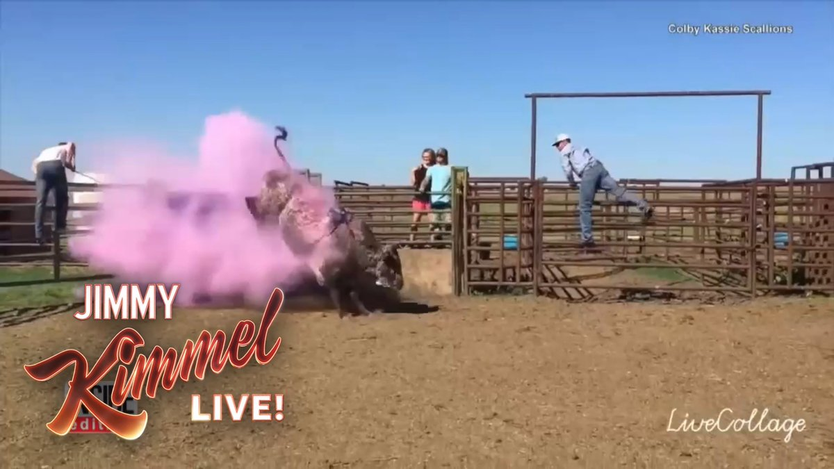 These gender reveal videos are getting out of hand… #FathersDay