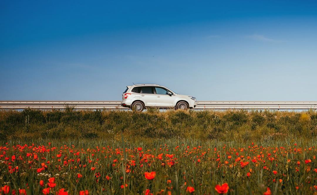 Soaking in the poppies field. Photo credits: @forester_almaty #subieweekend#subauforester#extraordinarysuv https://t.co/illEyjeulJ