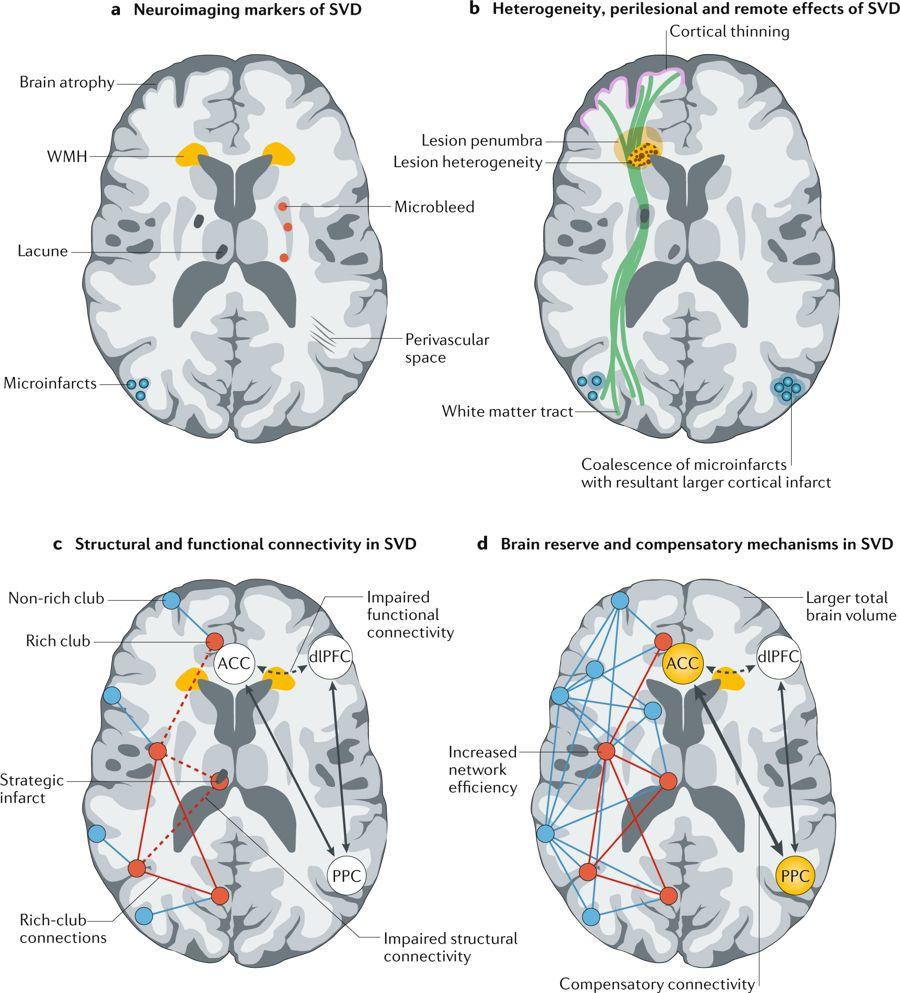 Figuras: Estética y fenomenología