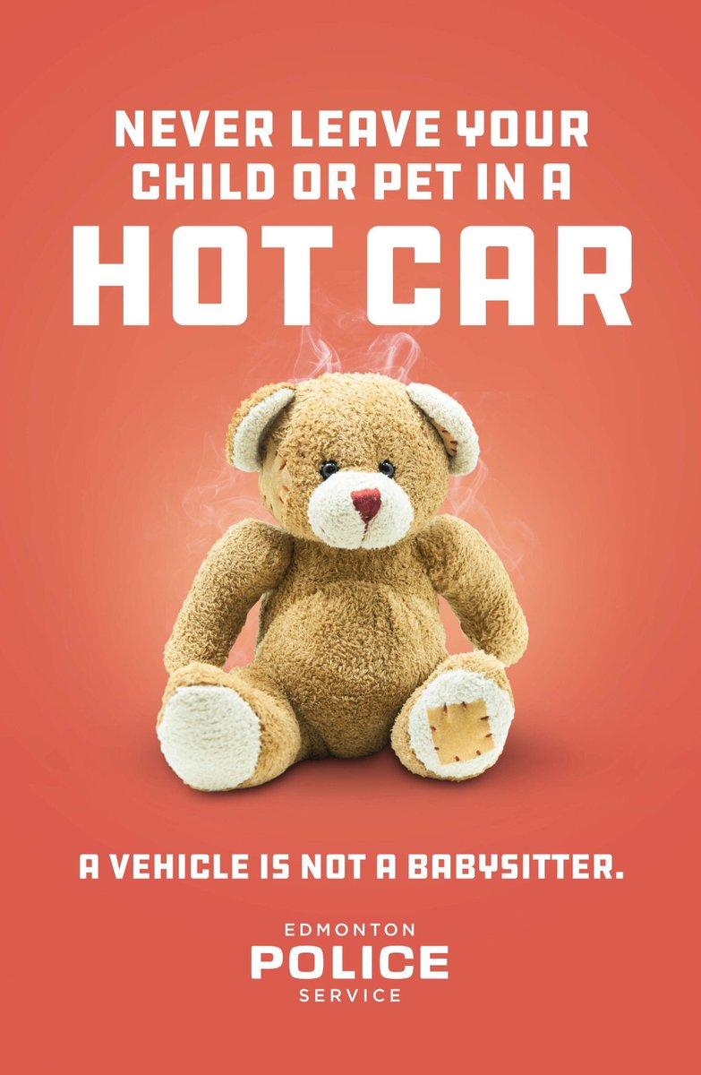 Co nenechat v autě během veder?