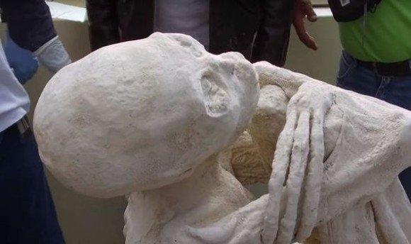 カラパイア : ペルー・ナスカで発見された3本指のミイラ、DNA解析の結果、ヒトの新種である可能性が浮上 https://t.co/tTKdW70kPT