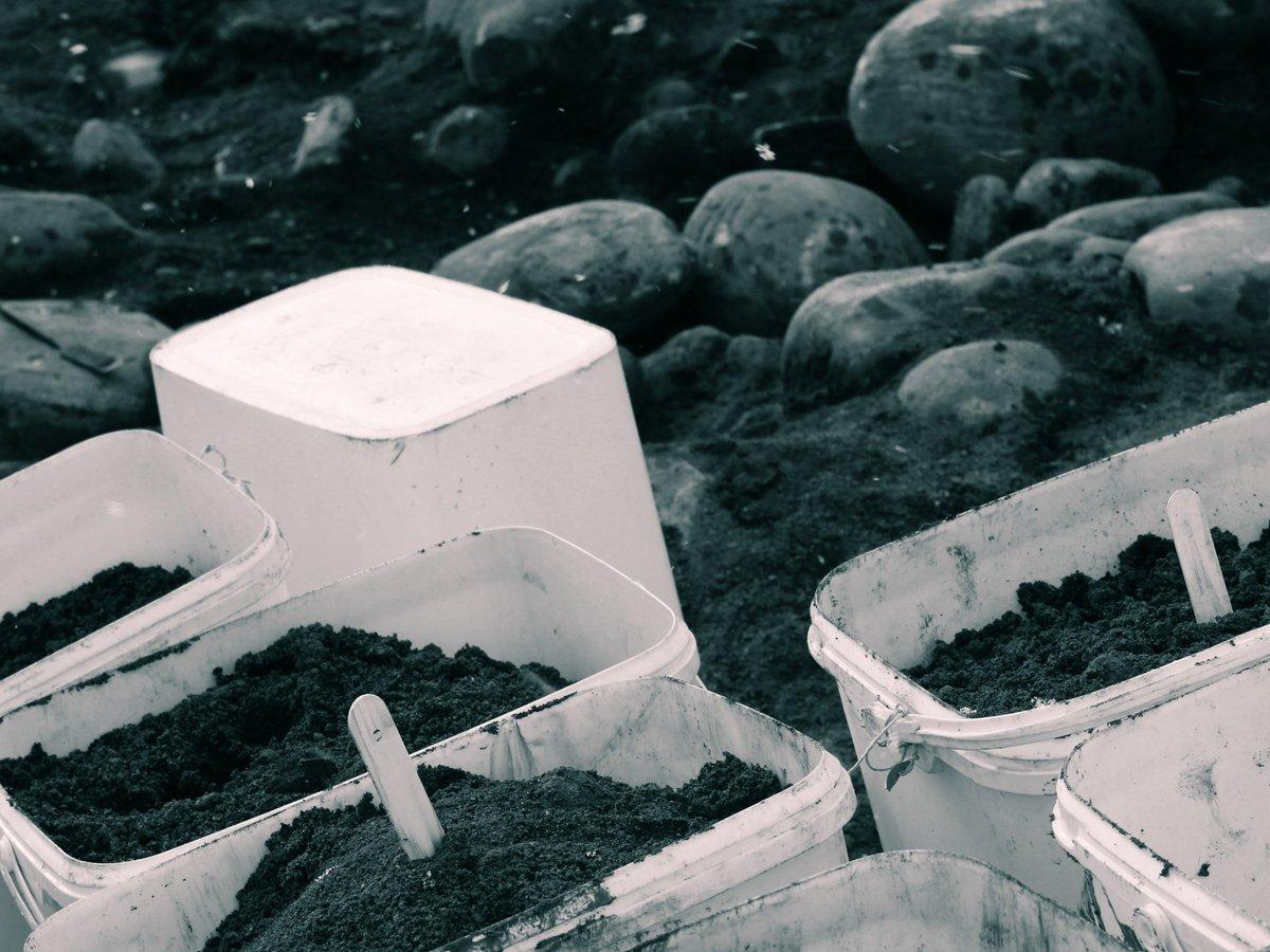 бани сауны материалы строительство лечебные свойства 2008
