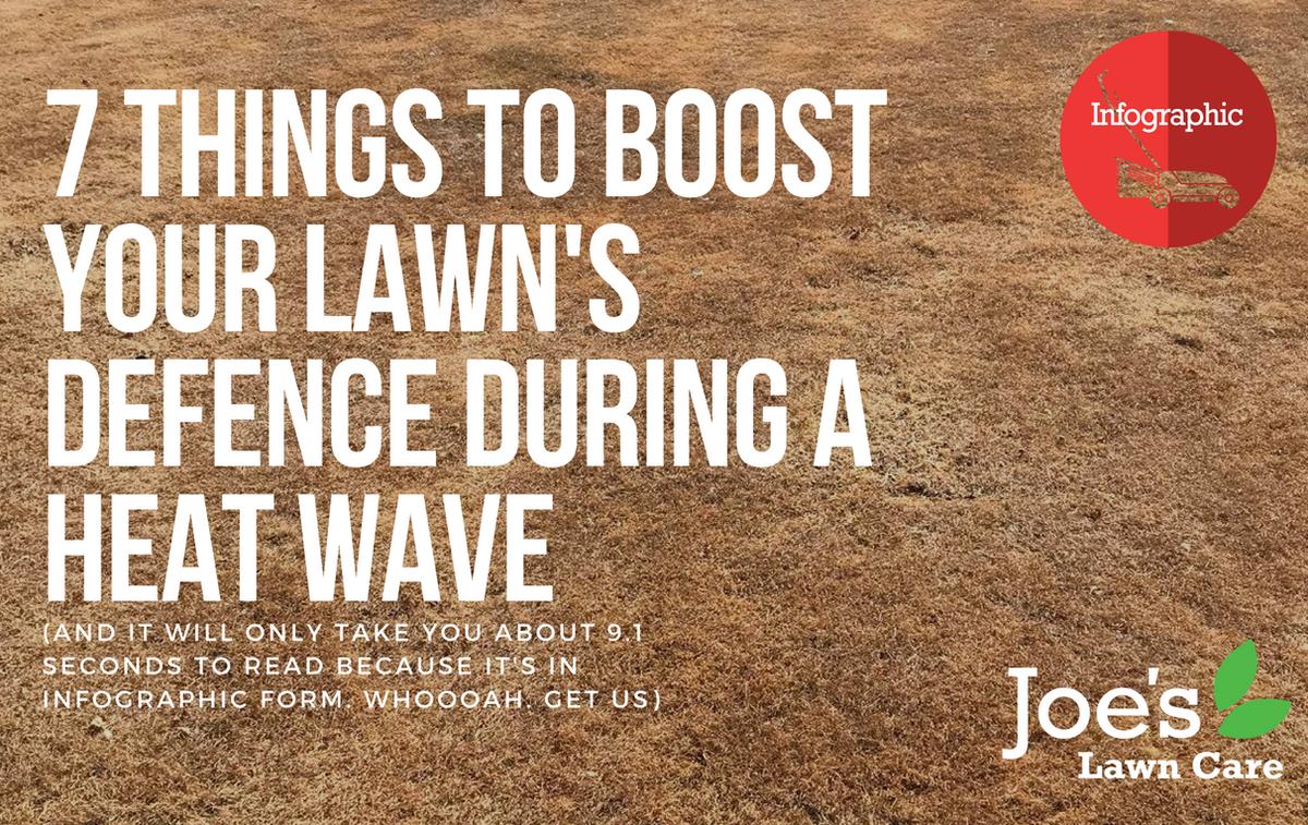 Joe\'s Lawn Care on Twitter: \