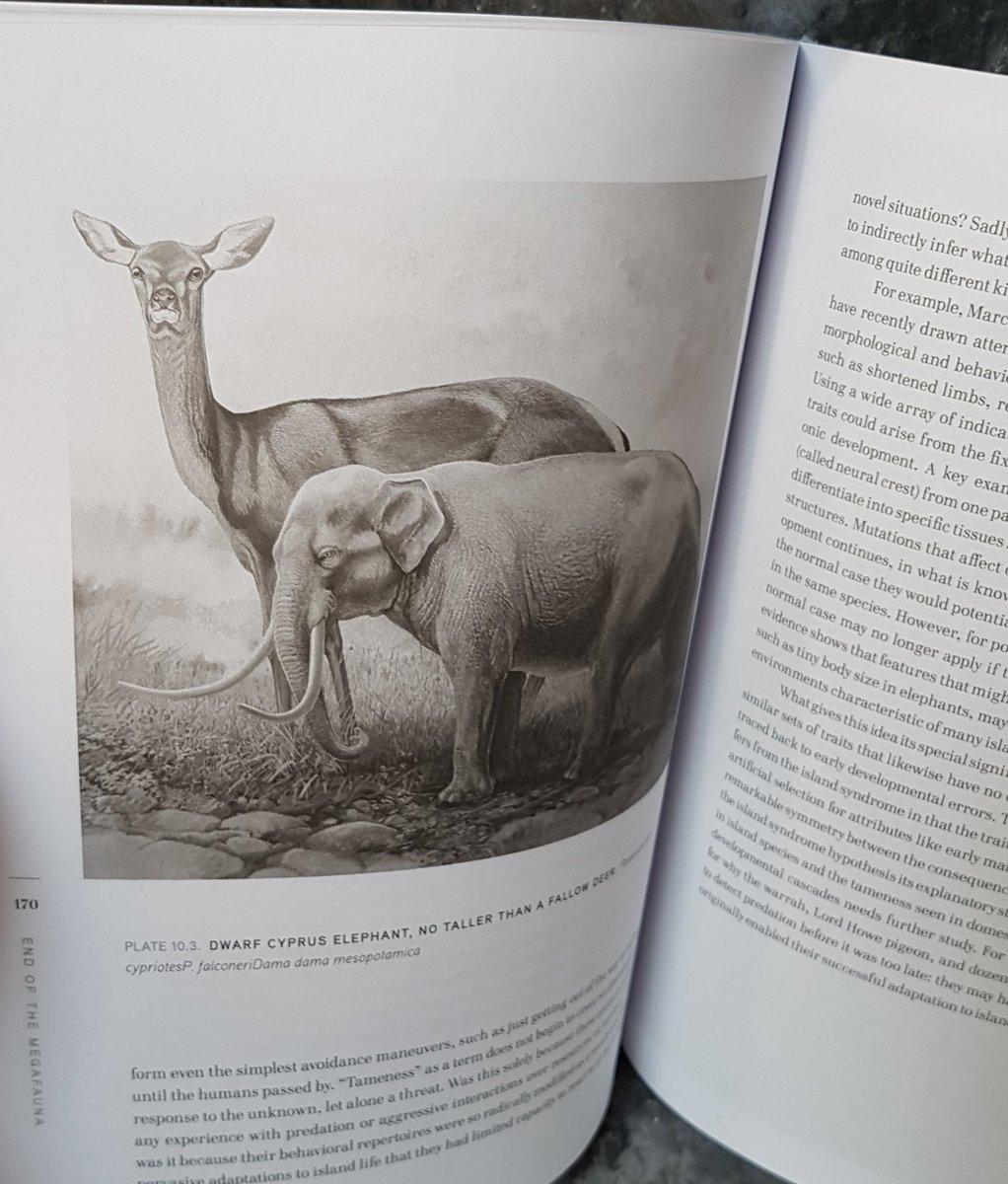 handbook of cliometrics